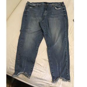 Lane Bryant 24 Jeans